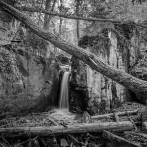 Peter Hladký - V rozprávkovom lese