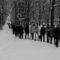 Vanda Kollárová - Stopy  snehu