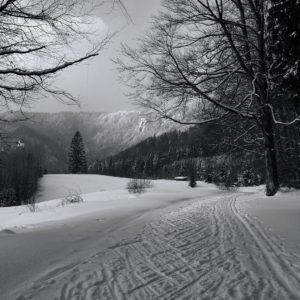 Miro Kováč - Na stope